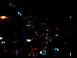 ナイトビジョンカメラ(夜間監視)