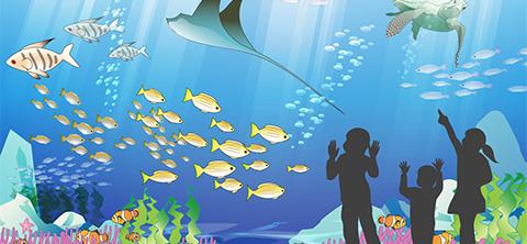 塚本無線は自社開発製造の防犯カメラと水中監視カメラを水族館に導入施工設置しました