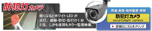 夜間監視に最適,夜間もカラー撮影可能な防犯灯カメラ