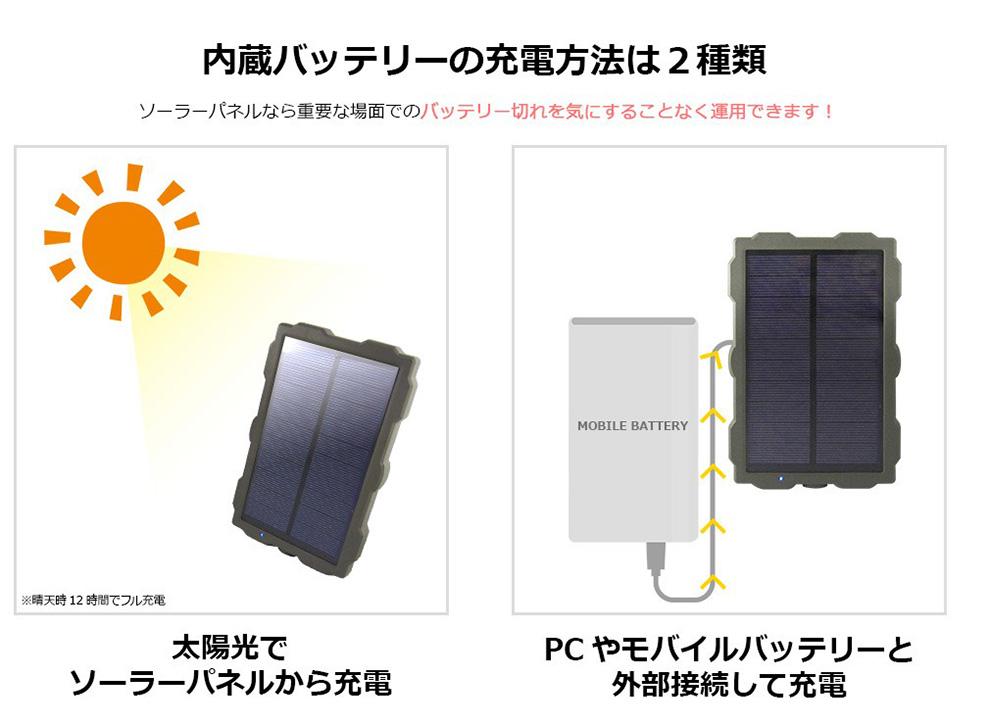 最新 ソーラー トレイル防犯カメラ