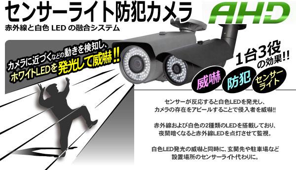 センサーライト防犯カメラ